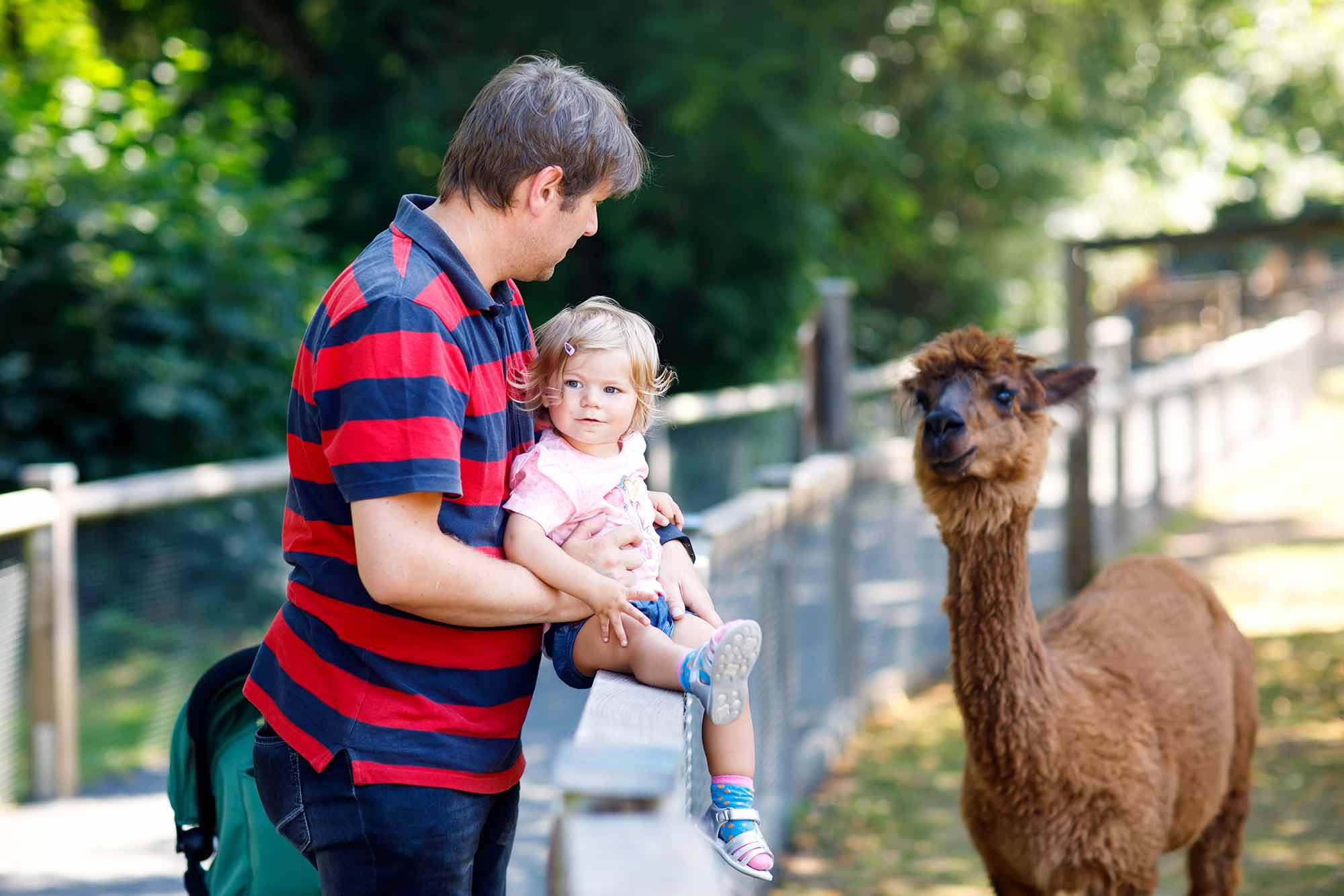 Tierpark Neumünster mit Kindern - Immer ein Besuch wert